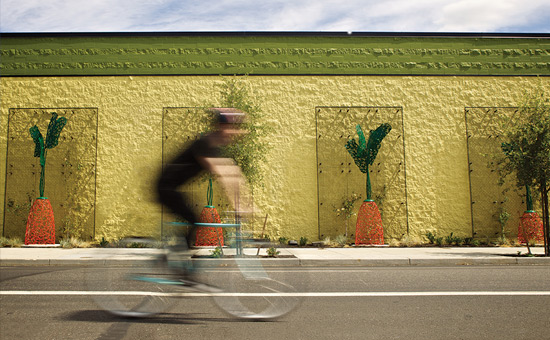 a biker passing by the north williams new seasons store