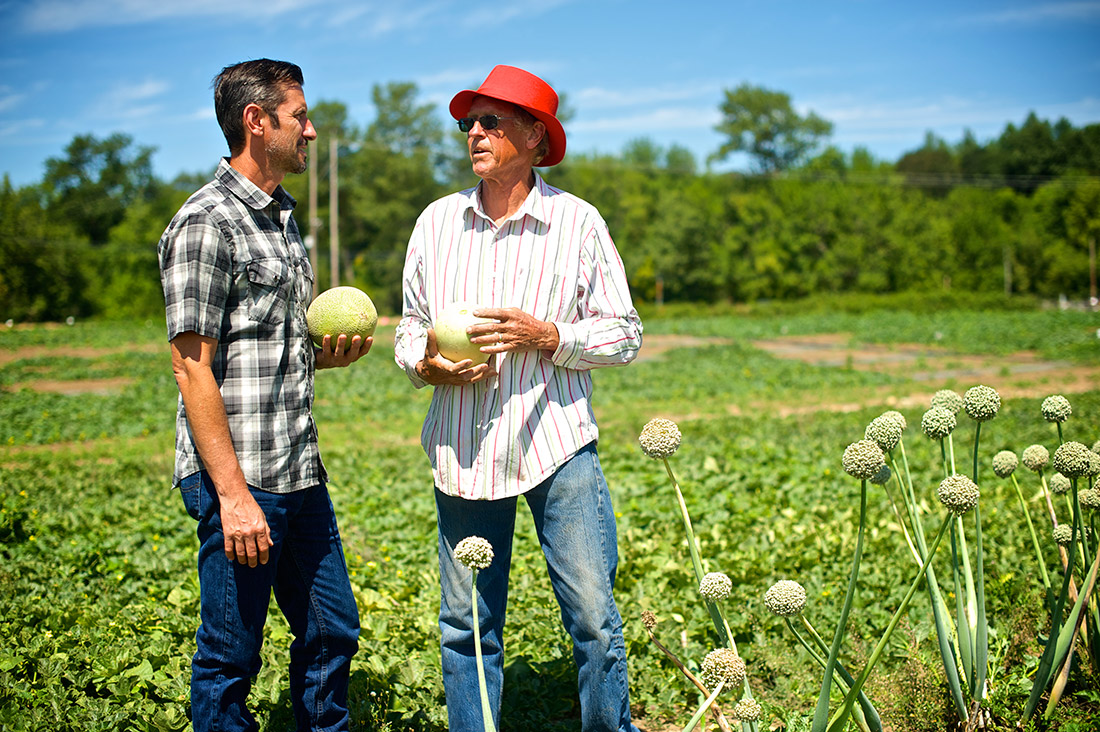 two men out in the produce fields picking melons